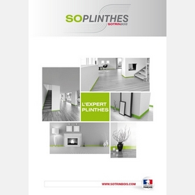 L'UNIVERS SOPLINTHES